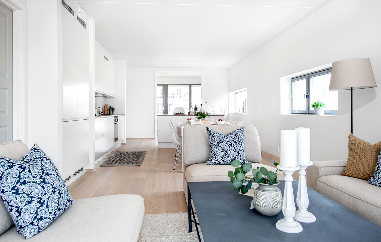 H02-101 02 Livingroom 1a